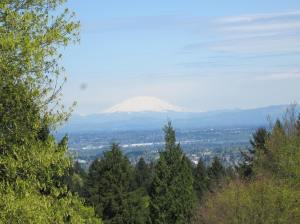 Mt. Hood as seen from Washington Park in Portland