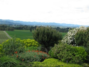 Willamette Valley, Oregon Wine Country